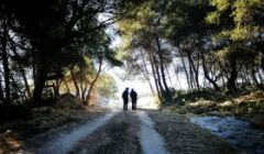 Concurs de fotografia Sant Jordi 2021
